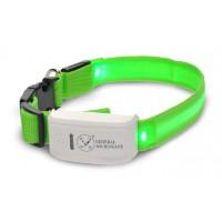 GPS-Трекер с LED-ошейником для животных